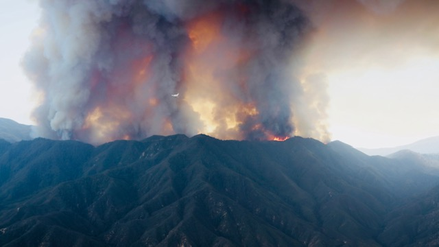 Protect Your Home From Wildfire – 6 Things You Can Do